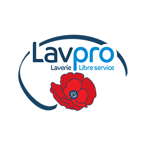 EverFruit Digital Case Study Lavpro